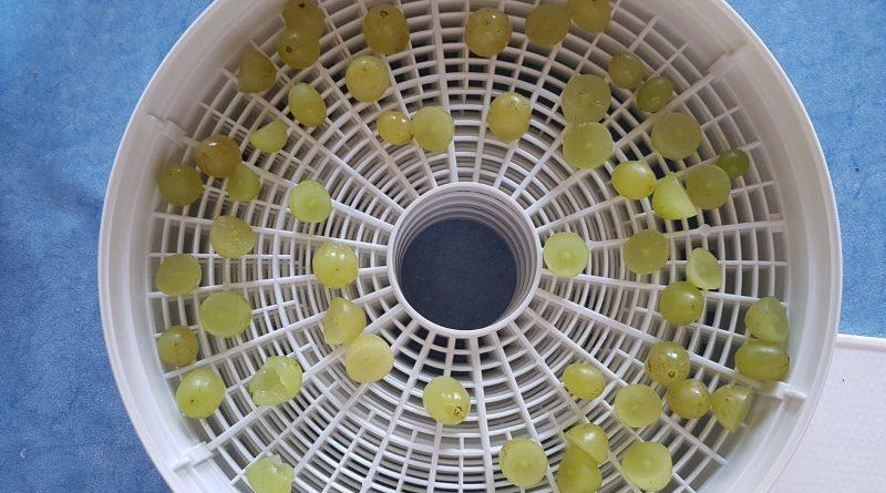 Zerschnittene Trauben im Dörrobst Bereiter